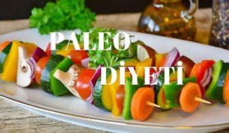 PALEO dİ