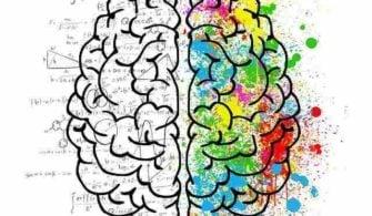 beyninizin hangi tarafını kullanıyorsunuz